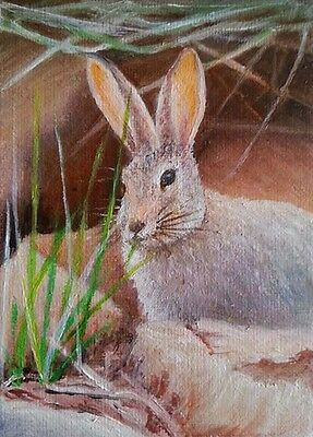 ACEO Original oil painting animals Rabbit by L K