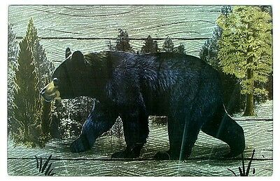 Large Black Bear Cutting Board- Hot Pad Woods Scene Acrylic Lodge Decor