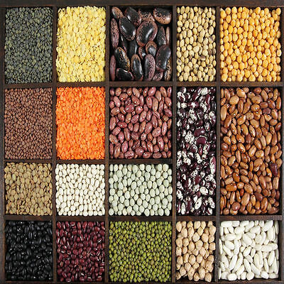 Basically Beans: New Ways with Beans, Pulses and Lentils (Healthy eating guides