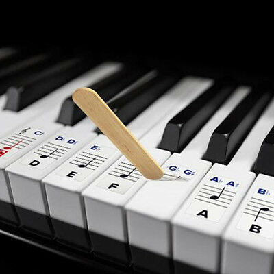 2017 Durable Universal Transparent Piano 54/61/88 Key Note Keyboard Sticker