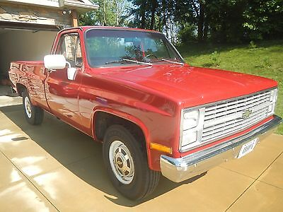 1983 Chevrolet Other Custom Deluxe 1983 Chevy C20 2WD Pickup