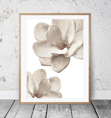 Magnolia 'Milk' Print -  plant, nature, floral, flower wall art