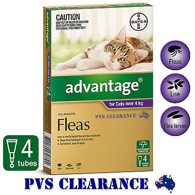 Advantage Purple 4 for Cats Over 4 kg - 4 Pack - Cat Flea Spot-On Treatment