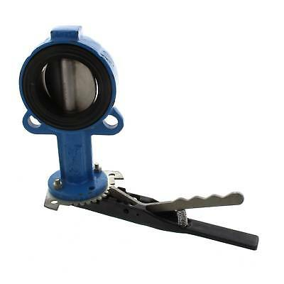 80mm CI Waf Butterfly Valve Stainless Steel Disc & Stem Irrigation Watering