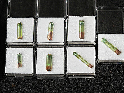7  TRI  COLOR  TURMALIN  KRISTALLE   TOURMALINE  CRYSTAL TERMINETED   29,71 ct