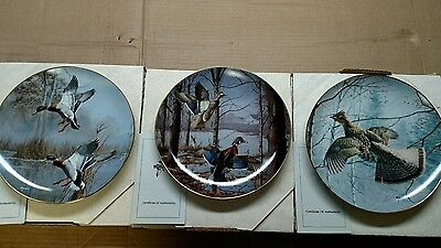 """Wild Wings """"Misty Morning"""" by David Maass 9 1/4"""" Collector Plates - Set of 3"""