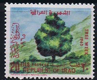 Iraq 1965 Tree , ERROR, Value and Inscription in Red, VERY RARE