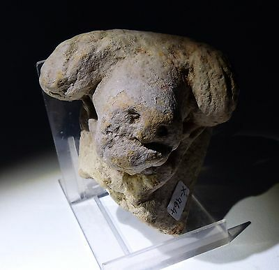 Lovely Ancient Greek Terracotta Rams Head Circa 500Bc  - No Reserve!
