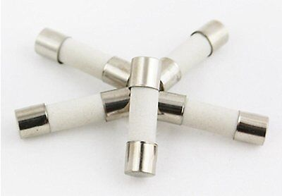 "Set of 5 - Ceramic Fuse Fast Blow (Quick Acting) 125/250v 5x20mm (3/16"" X 3/4"")"