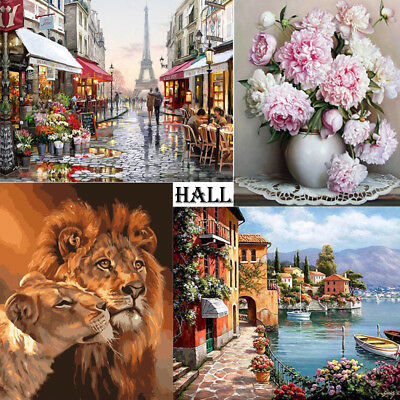 DIY Digital Oil Painting Kit Paint by Numbers on Canvas Scenery Home Decor HL03