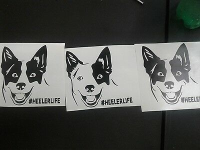 ACD / Blue Heeler / Red Heeler  vinyl decal