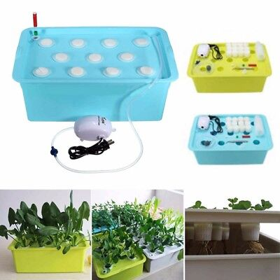 11 Holes Plant Site Hydroponic System Grow Kit Bubble Tub Air Pump Water Set