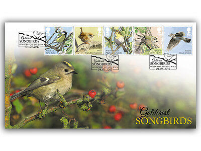 Buckingham Covers Songbirds - Goldcrest