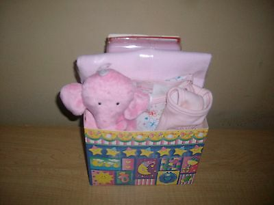 Baby Girl Baby Shower Gift Basket or Centerpiece