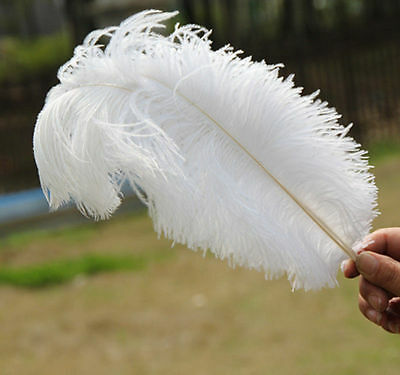 100 pcs White ostrich Feathers 12-14 inch/30-35 cm for Wedding Diy carnival mask