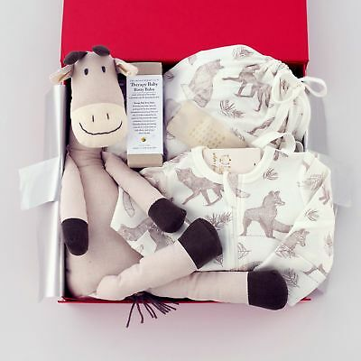NEW Baby Clothing, Gifts and Accessories Jack In The Box Baby Hamper