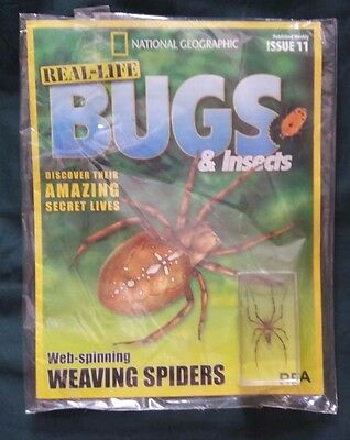 New National Geographic Real Life Bugs & Insects Mag Issue 11 Weaving Spiders