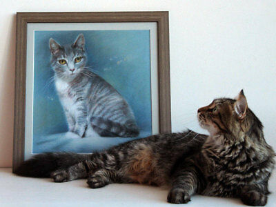 Custom pastel cat portrait drawing commissions. Photo to painting. Personalized
