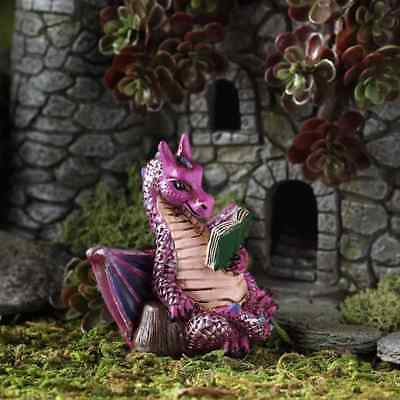 Dragon with a Book Fairy cottage Home Garden Craft Décor