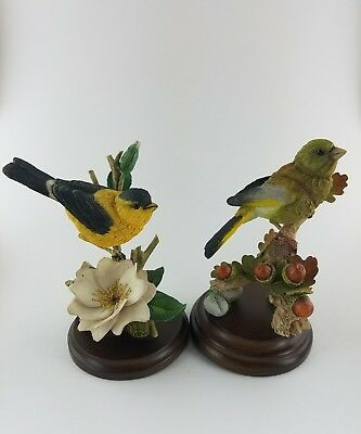 Country Artist Handpainted Goldfinch with White Rose and Green Finch with Acorns