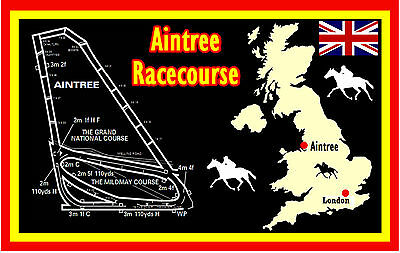 Horse Racing (Aintree Racecourse) - Souvenir Novelty Fridge Magnet - Gifts
