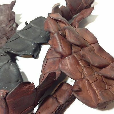 Lot of Crocodile Leather Tail Sections / Taxidermy