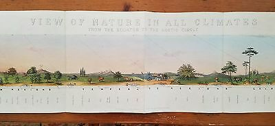 Huge James Reynolds View of Nature Zoological & Volcano Hand Colored Litho 1852