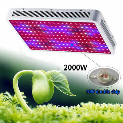 2000W LED Grow Light Hydro Full Spectrum Vegs Flower Indoor Plant Lamp Panel