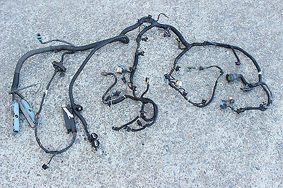 Gm Vx V8 Ls1 5.7L Engine / Ecu Wiring Loom Harness - Automatic - Vt Vu Ss Hsv