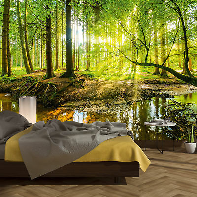 Wallpaper Mural Forest 366 x 254 cm Wood Trees Sunlight Photo included Glue