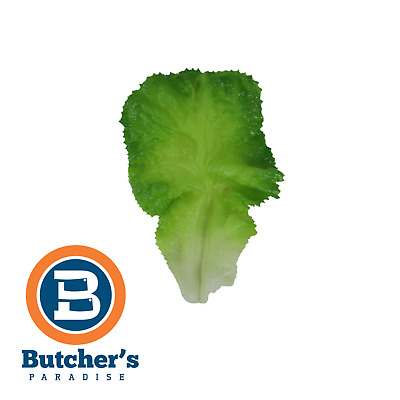 Butcher's Decor Artificial Lettuce*5 Meat Display