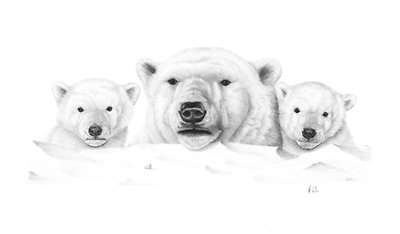 Limited edition print of a family of Polar Bears by Athony Wren