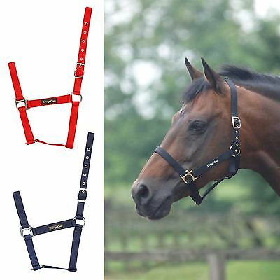 Cottage Craft Field Webbing Halter Shet Pony Cob Full H101 Standard Headcollar