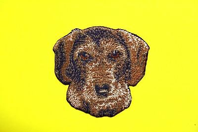"Wirehaired Dachshund Dog Embroidered Patch 3""x3-1/4"" Free Shipping"