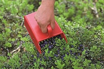 Berry Pickers From Linden Plastic Comb Made in Sweden