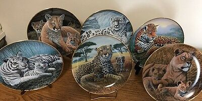 Pre-Owned Lot Of 6 Michael Matherly Ltd Ed Plates Wild Cats Franklin Mint