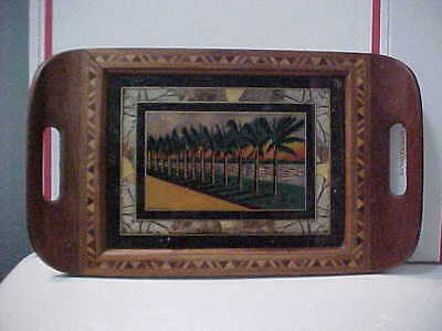 Rio De Janeiro Butterfly Wing Landscape Scene Marquetry Inlaid Wood Tray 15 X 9