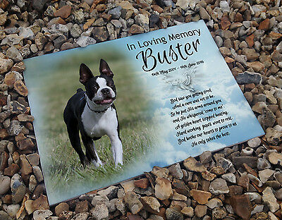 Personalised white cermaic tile headstone memorial plaque Boston terrier dog