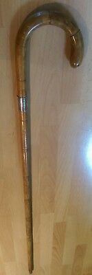 Vintage Bamboo Cane Walking Stick with Silver Collar