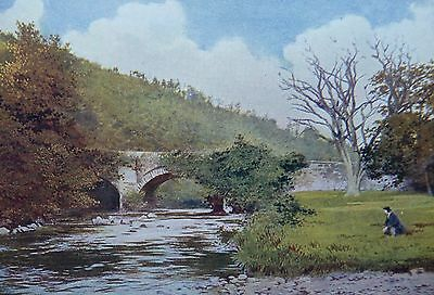 Meeting Bridge & Moore's Tree Avoca L& N.w Railway Edwardian Post Card