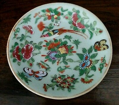 Antique Chinese Celedon Famille Rose Porcelain Plate: 19th Century