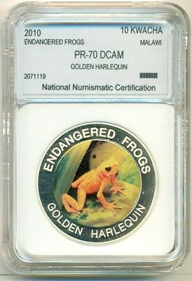 Malawi 2010 10 Kwacha - Endangered Frogs Golden Harlequin Proof UNC BU