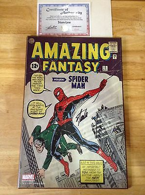 Amazing Fantasy #15 (wall picture signed by Stan Lee w/ COA)