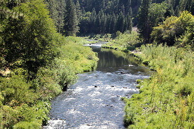 Virgilia Placer 29 Acre Placer Gold Mining Claims Equipment Land Plumas, CA