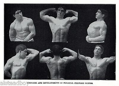 ANT Doctor Physician Medical Male Physical Body Builder Gay Interest Plate Photo