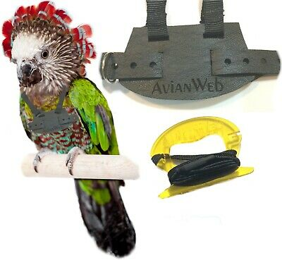 EZ RIDER Bird Harness with 8 Foot Leash - Color: BLACK - Made in the USA