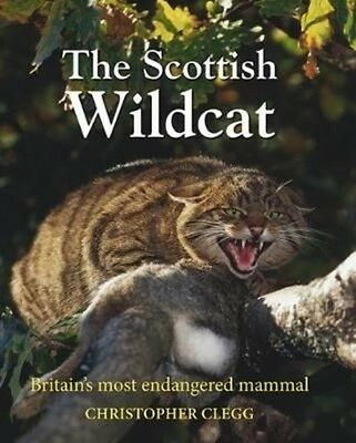 Scottish Wildcat by Christopher Clegg Hardcover Book