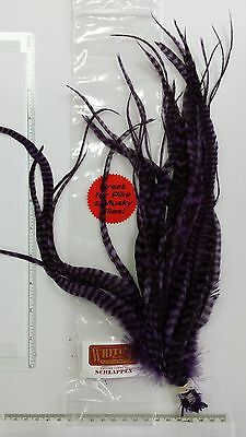 """WHITING SCHLAPPEN BUNDLE 10/""""-14/""""   /"""" Grizzly Purple /""""  FLY TYING"""