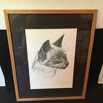Hand Drawing Framed Cat Picture Signed