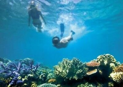 Voucher for 2 for great barrier reef cairns snorkel boat cruise